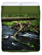 Spring Morning At Crum Elbow Creek I Duvet Cover