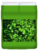 Spring New Beech Leaves Duvet Cover