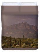Spring Rain In The Sonoran  Duvet Cover