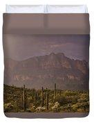 Spring Rain In The Sonoran  Duvet Cover