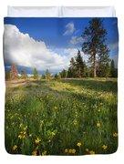 Spring Shadows Duvet Cover by Mike  Dawson