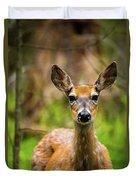 Spring Shed Duvet Cover