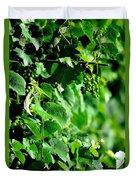 Spring Time Vineyards Duvet Cover