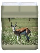 Springbuck And Butterfly Duvet Cover