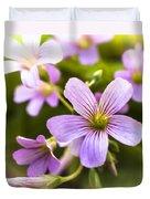 Springtime Blooms Violet Wood Sorrel 3 Duvet Cover