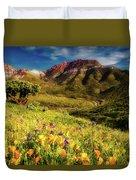 Springtime In The Desert Southwest Duvet Cover
