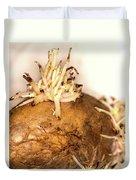 Sprouting Potato Duvet Cover