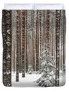 Spruce Among The Pines Duvet Cover