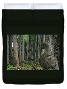 Spruce Burls Olympic National Park Wa Duvet Cover by Christine Till
