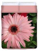 Square Framed Pink Daisy Duvet Cover