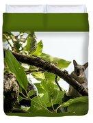 Squirrel 3 Duvet Cover