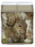 Squirrel And Nuts Duvet Cover