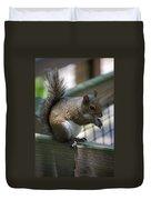 Squirrel II Duvet Cover