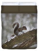 Squirrel In The Snow Duvet Cover