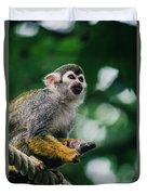 Squirrel Monkey Looking Up Duvet Cover
