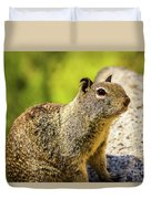 Squirrel On The Rock Duvet Cover