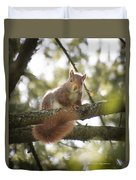 Squirrel On The Spot Duvet Cover