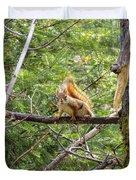 Squirrel Standoff Duvet Cover
