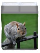 Squirrel Watching Duvet Cover