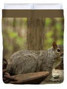 Squirrel With Anchor Duvet Cover