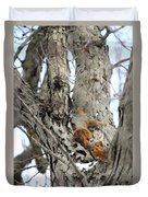 Squirrels At Play Vertically Duvet Cover