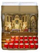 St. Hyacinth Basilica Duvet Cover