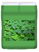 St Patricks Day Shamrocks - First Green Of Spring Duvet Cover