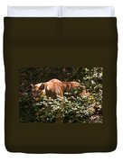 Stalking Big Cat Duvet Cover