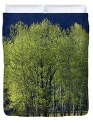 Stand Of Trees Yosemite Valley Duvet Cover