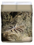 Star Fish On The Rock Duvet Cover