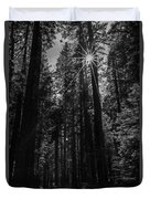 Star In The Forrest Duvet Cover
