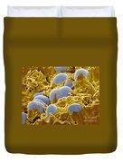 Starch Granules Sem Duvet Cover