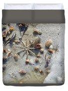 Starfish And Sea Shells Duvet Cover