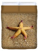 Starfish Duvet Cover by Mamie Thornbrue