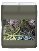 Starfish On A Coral Reef Duvet Cover