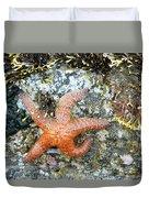 Starfish Running Duvet Cover