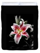Stargazer On Black 11x14 Duvet Cover