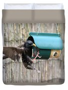Starling On Bird Feeder Duvet Cover