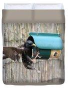 Starling On Bird Feeder Duvet Cover