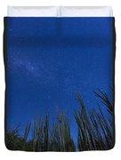 Stars Over Cactus Duvet Cover
