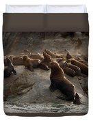 Stellers Sea Lions Eumetopias Jubatus Duvet Cover