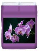 Stem Of Orchids  Duvet Cover