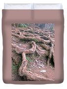 Steps With Roots Duvet Cover
