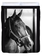Horse And Stillness Duvet Cover