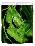 Stink Bug On Leaf Duvet Cover