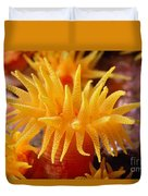 Stony Cup Coral Duvet Cover