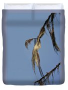Strand Of Moss Swaying Gently With The Wind - Tiger Mountain Wa Duvet Cover