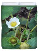 Strawberry Bloom And Baby Berries Duvet Cover