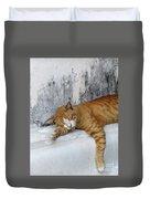Stray Cat Sleeps On The Floor-2 Duvet Cover