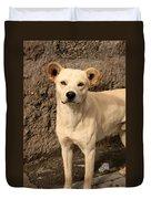 Stray White Dog Duvet Cover